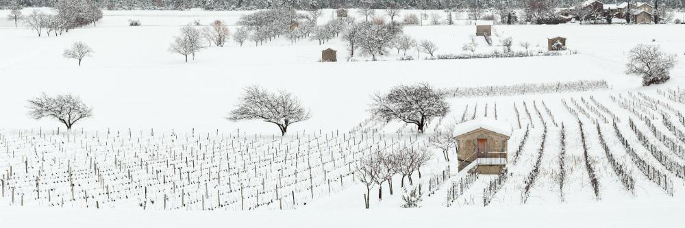 11841-france-Drome-Vignes-et-cabanons-Chatillon-en-Diois-panorama-sentucq