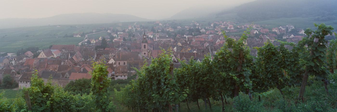 Matin brumeux à Riquewihr