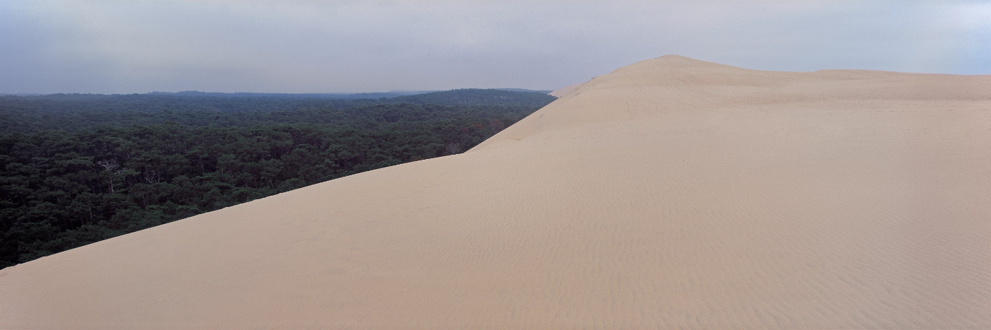 Dune du Pyla, côte Atlantique