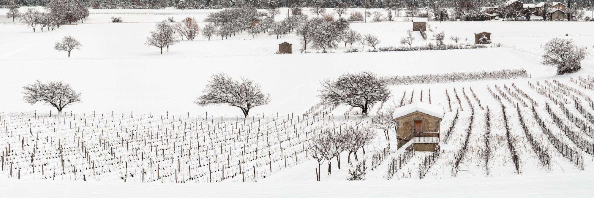 Vignes et cabanons en hiver, Châtillon-en-Diois