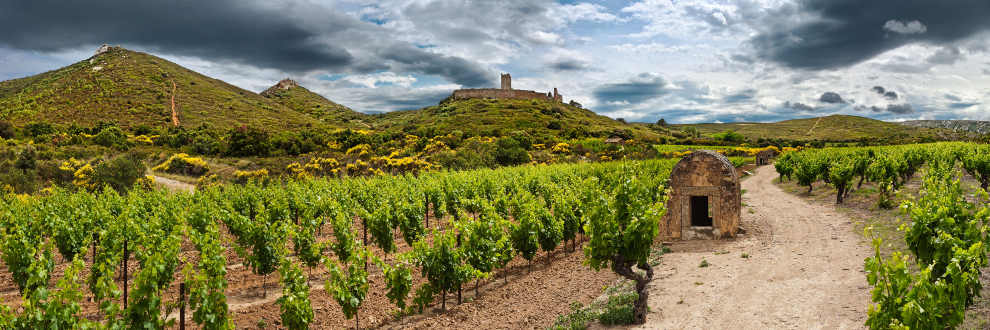 Castellas de Montredon-des-Corbières