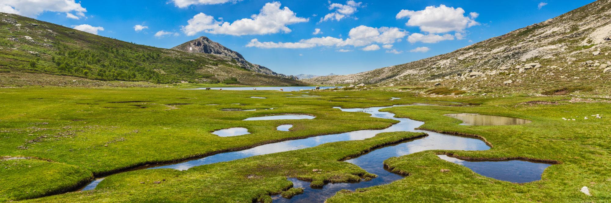 Pozzines près du lac de Nino,