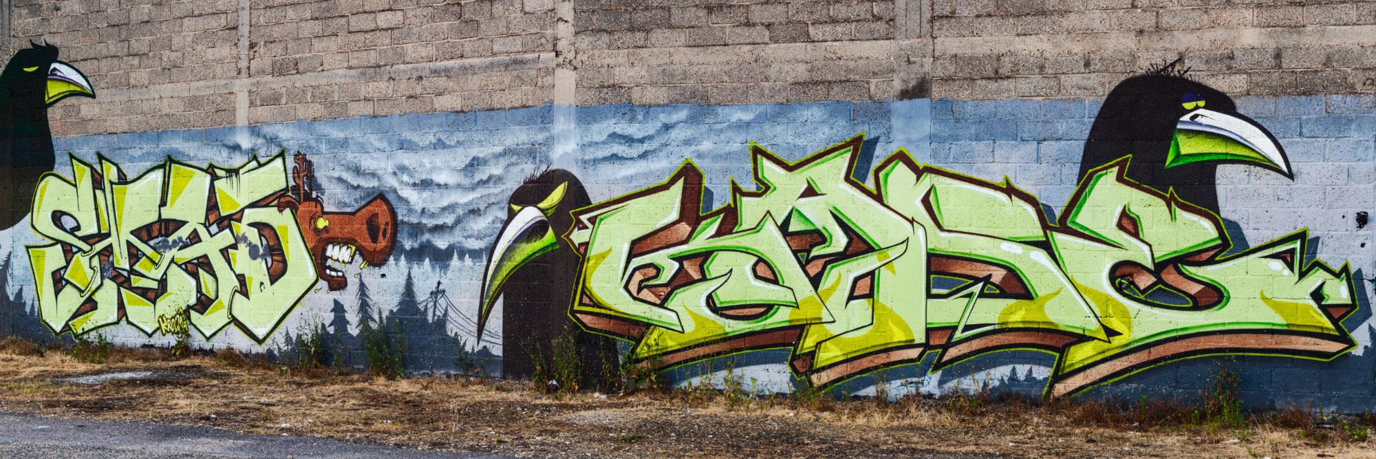 Graff, près du Pont d'Eauplet, Rouen / Kase - Smad