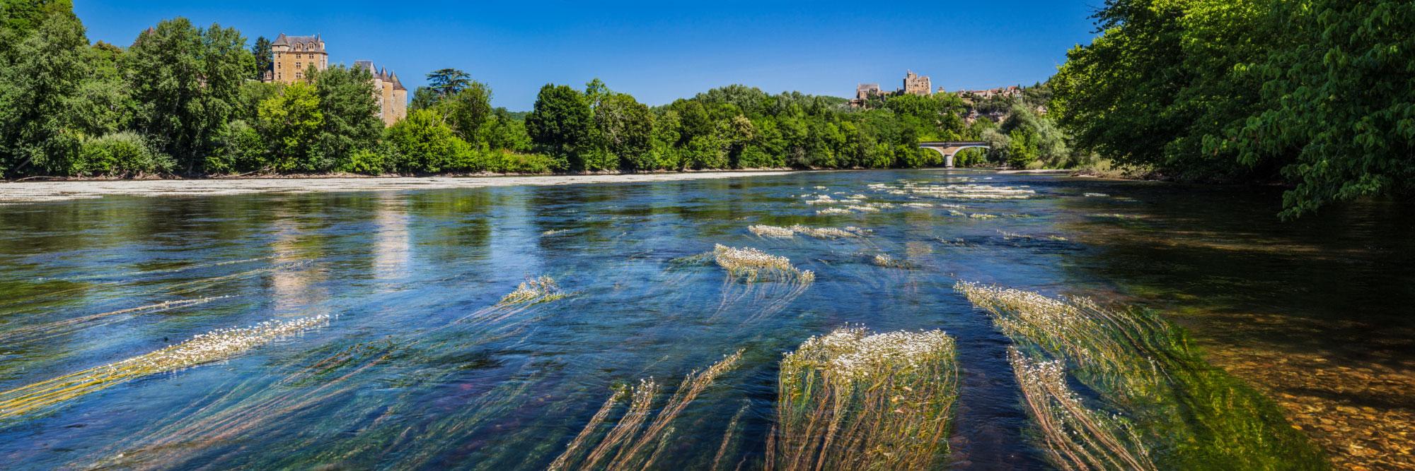 Herbiers à renoncules sur la Dordogne à Vézac, avec les châteaux de Fayrac et de Beynac sur les coteaux