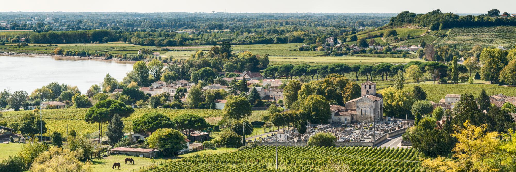 La Dordogne, vue du tertre de Fronsac