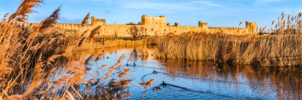 15241 Remparts d'Aigues-Mortes, Camargue (Gard), Février