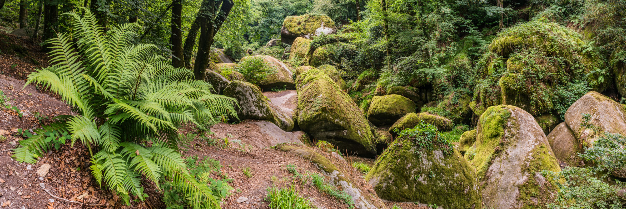 Huelgoat, dans les monts d'Arrée, vestige de la mythique forêt de Brocéliande, Argoat