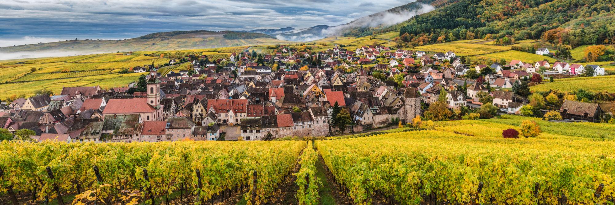 Cité médiévale de Riquewihr, Alsace