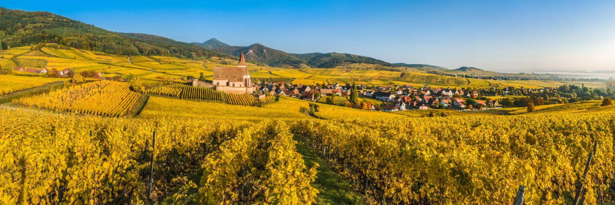 Hunawihr, serti dans un écrin de vignes, Alsace