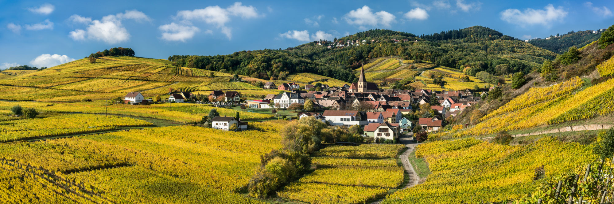 Niedermorschwihr, au pied des Vosges, Alsace
