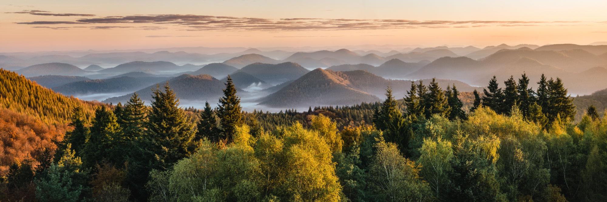 Les Vosges du Nord depuis le belvédère du Grand Wintersberg (581 m), Alsace