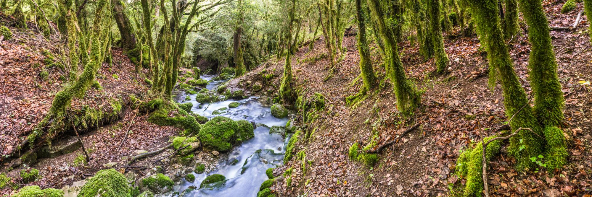 Ruisseau de Valcroissant, Diois, Vercors