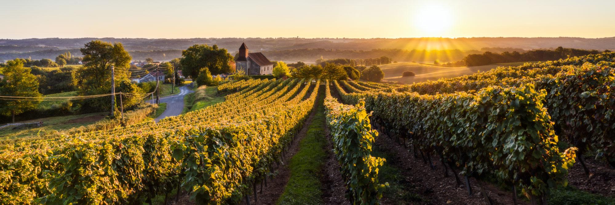 Crouseilles, vignoble de Madiran, Béarn