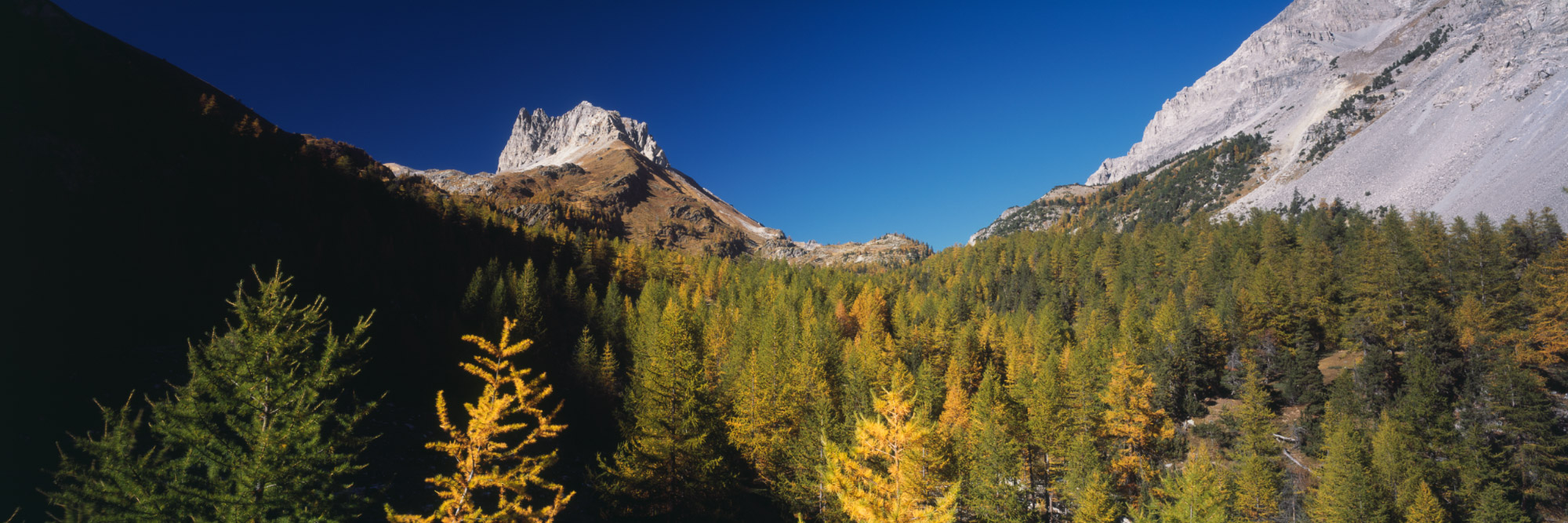 Mont Thabor, Massif des Cerces