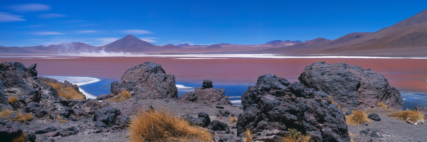 Laguna Colorada Lipez Bolivie Herve Sentucq Photo