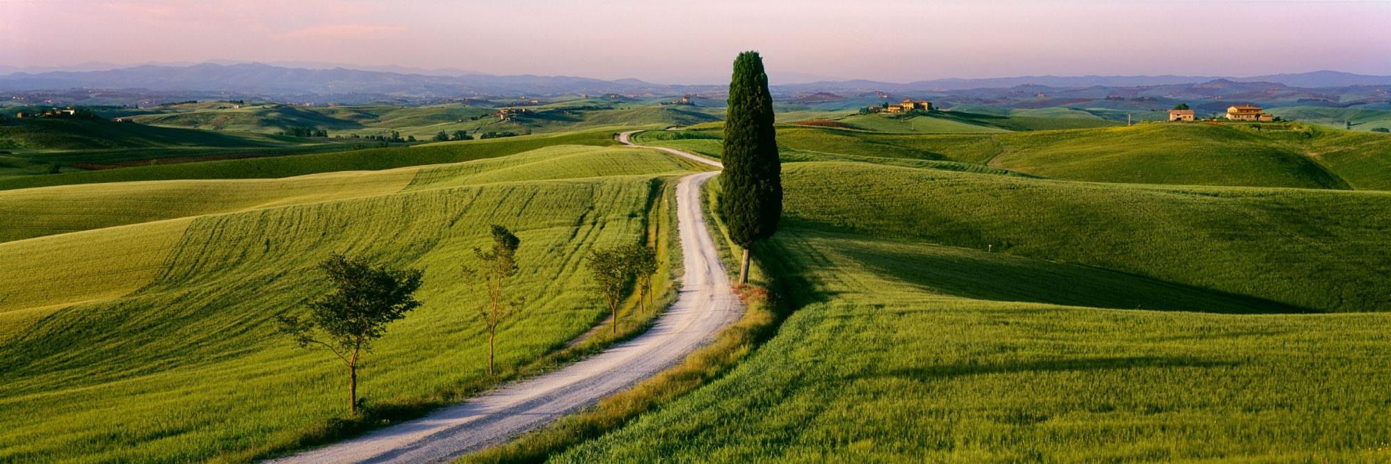 Chemin de terre et villas, Corsano